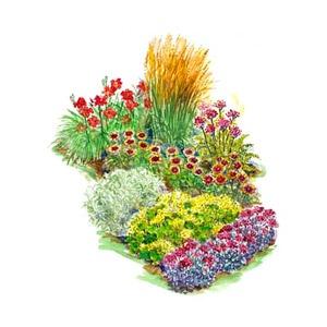 Hot color garden