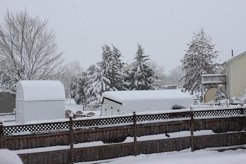 Finally, real snow!!