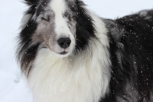 There's snow in my eyes!
